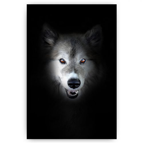 poster mysterieuze wolf